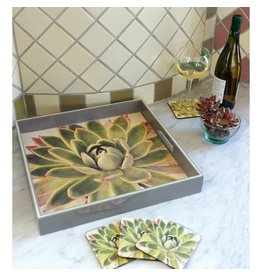 RockFlowerPaper Green Succulent Square Tray