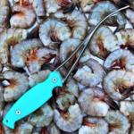 Toadfish Toadfish Frogmore Shrimp Cleaner