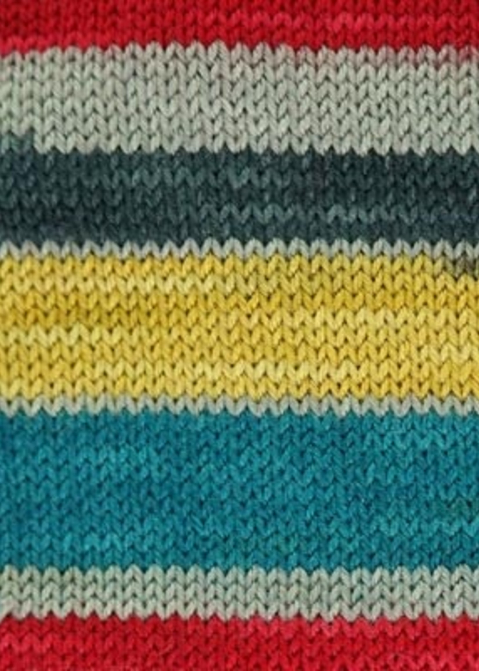 Cascade Heritage Sock Print Stripes