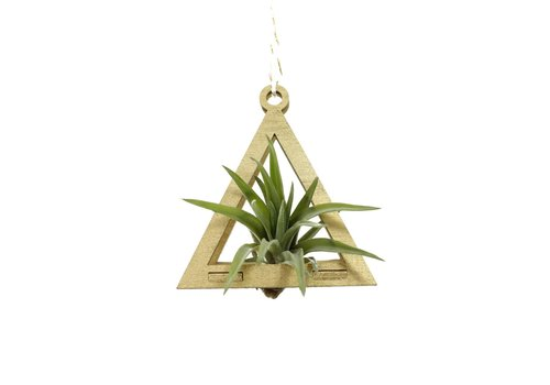 Savvie Studio Mini Air Plant Hanger - Triangle