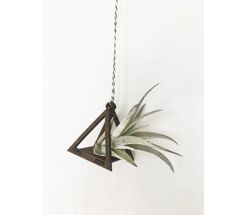 Mini Air Plant Hanger - Triangle