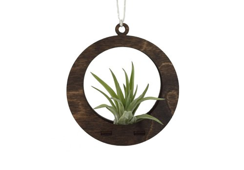 Savvie Studio Mini Air Plant Hanger - Circle