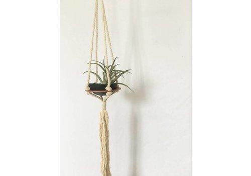 Savvie Studio Macrame Plant Hanger - Single