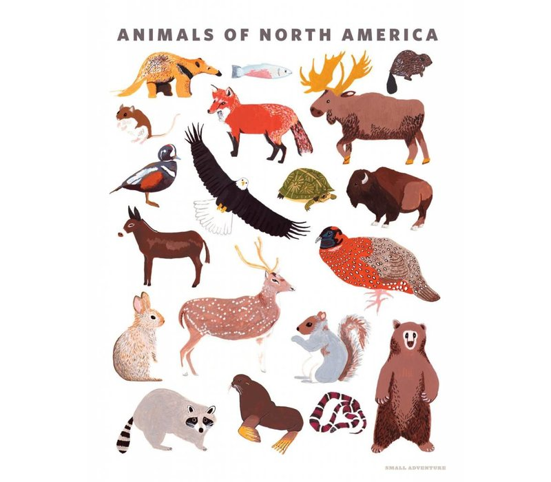 Animals of North America Art Print