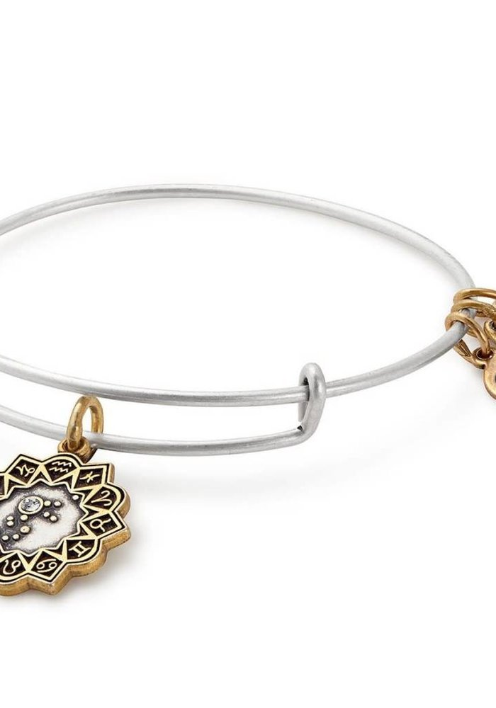 Alex & Ani Aquarius Two Tone Charm Bangle