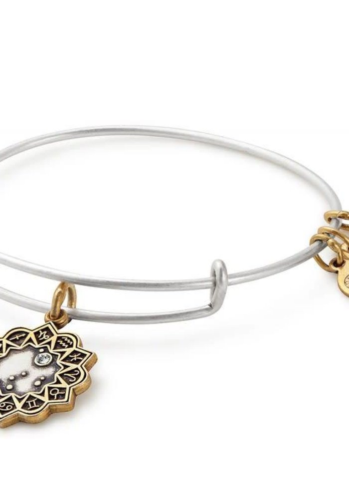 Alex & Ani Capricorn Two Tone Charm Bangle