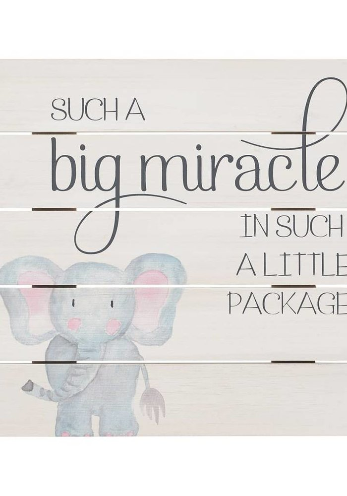 Such a Big Miracle Pallet Sign