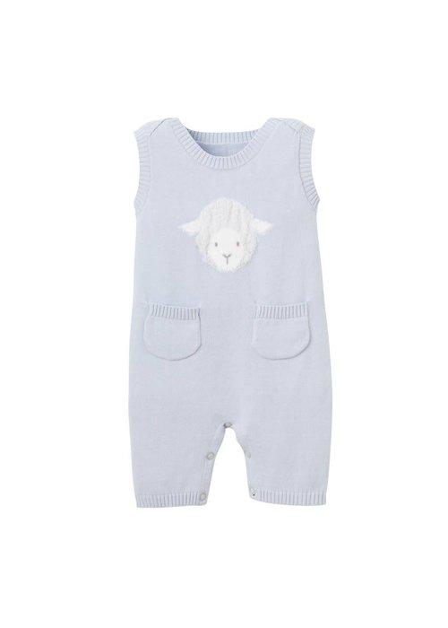 Elegant Baby Blue Lambie Shortall