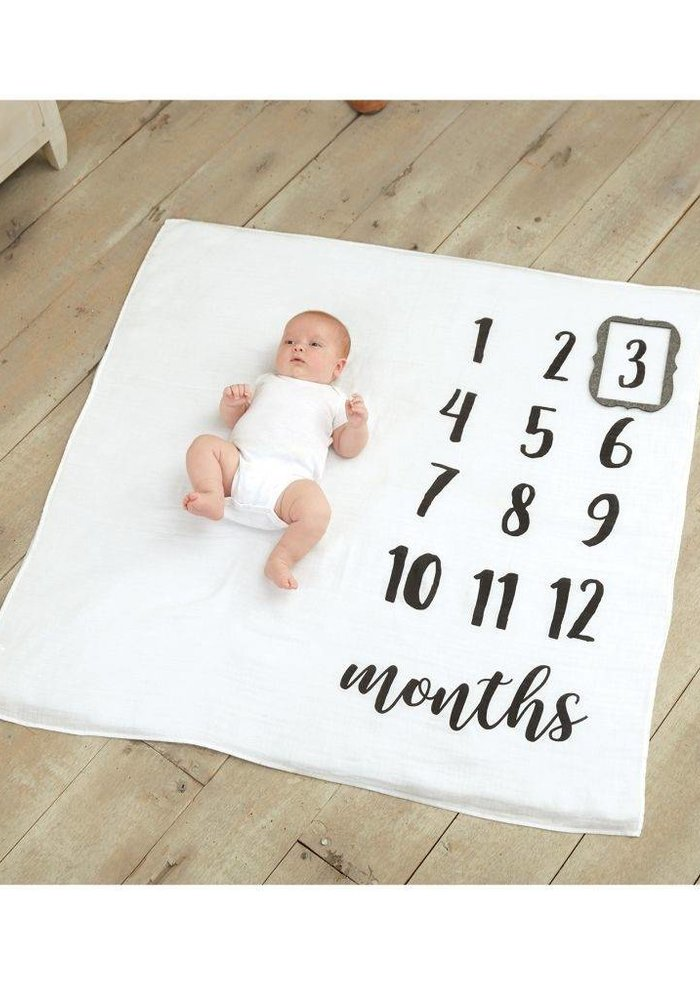 Monthly Milestone Blanket Set