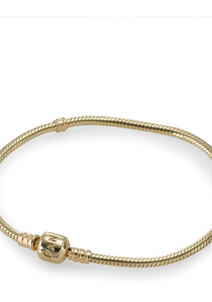 14K Gold Clasp Charm Bracelet
