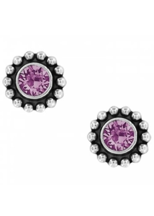 Brighton Amethyst Twinkle Mini Post Earrings