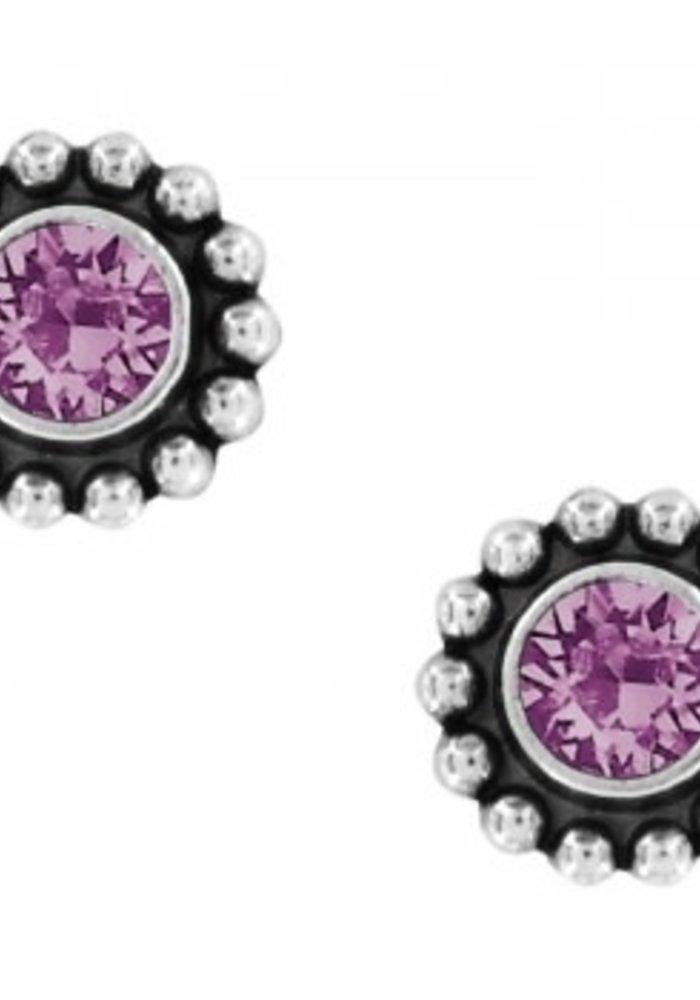 Amethyst Twinkle Mini Post Earrings