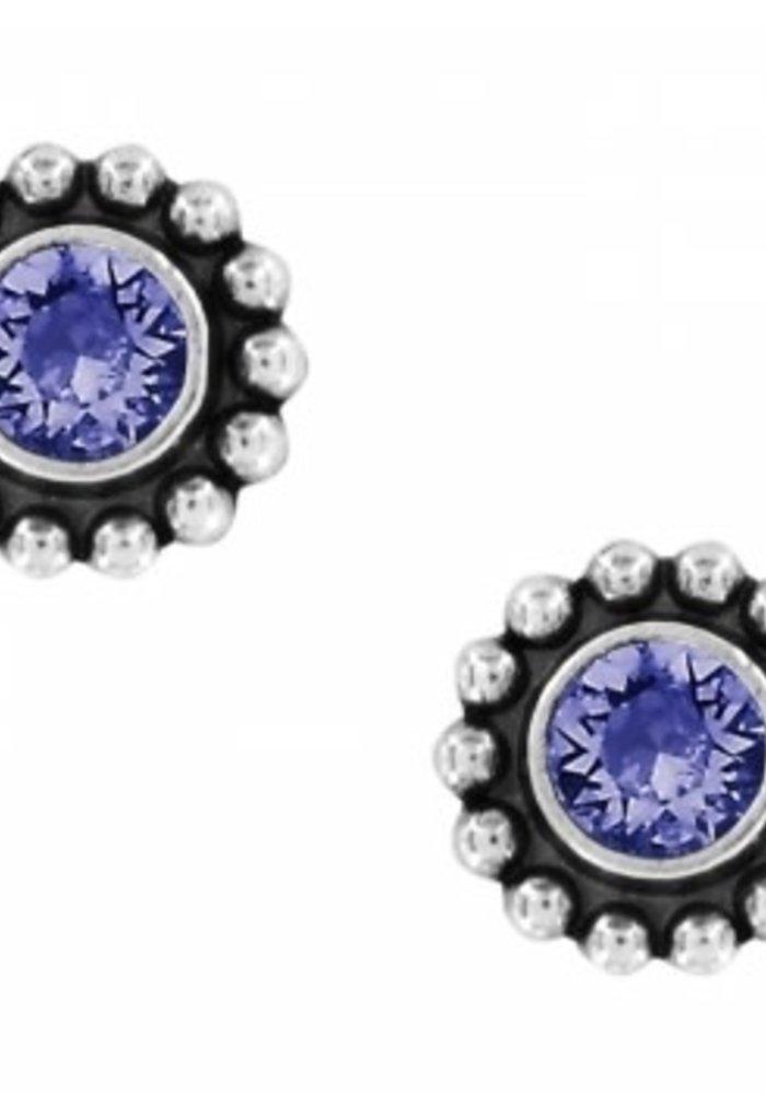 Tanzanite Twinkle Mini Post Earrings