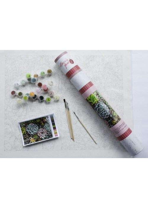 Pink Picasso Sensitive Succulents Paint by Numbers Kit