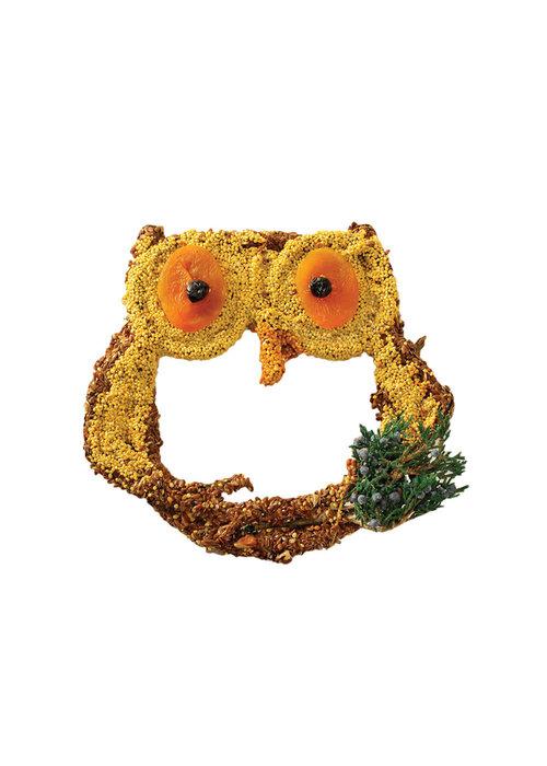 "Mr. Bird ""Owl Treats"" Apricot & Blueberry Birdfeed"