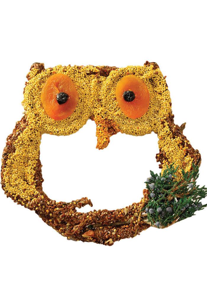 """Owl Treats"" Apricot & Blueberry Birdfeed"