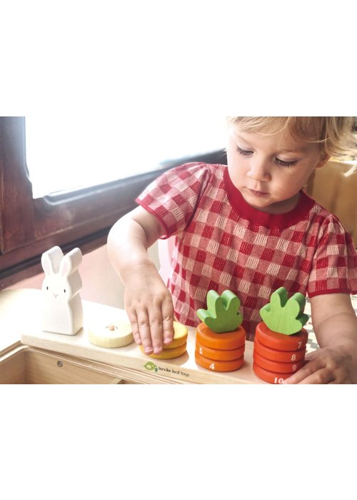 """""""Counting Carrots"""" Wooden Learn & Play Set"""
