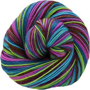 String Theory Colorworks Entanglement - Zooxanthallae