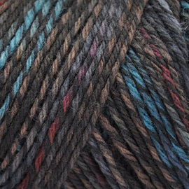 Brown Sheep Wildfoote Sock - 650 Mineral Springs Handpaint