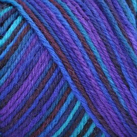 Brown Sheep Wildfoote Sock - 600 Symphony Handpaint