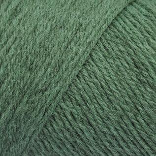 Brown Sheep Wildfoote Sock - 56 Emerald Isle