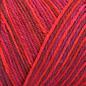Brown Sheep Wildfoote Sock - 300 Ragtime Handpaint