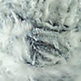 Cascade Furliscious - 02 Chinchilla