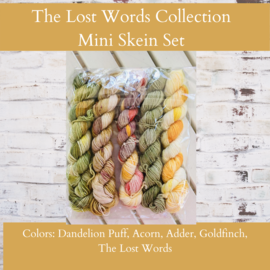 Toad Hollow Yarns Sock Toad - Lost Words Mini Skein Collection (5)