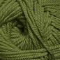 Cascade 220 Superwash Merino - 10 Dark Moss
