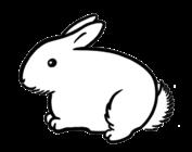Fat Bunny Yarn