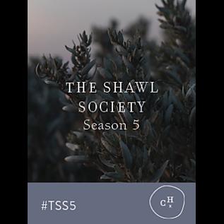 Shawl Society 5 - 3rd Shawl Combo 03 World Traveler Porcelein, Parmesan, Espresso