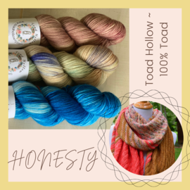 Toad Hollow Yarns Honesty Kit - Who is Honest?