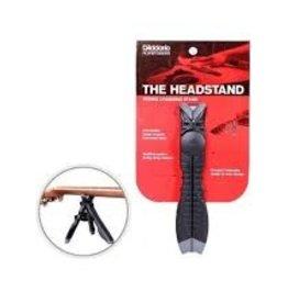D'Addario D'Addario The Headstand