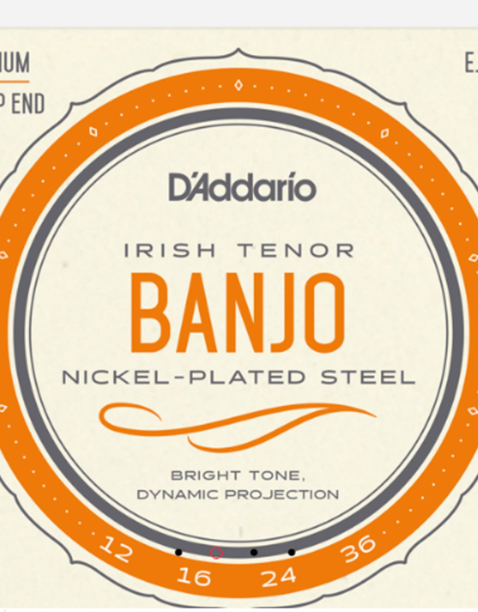 D'Addario D'Addario Irish Tenor Banjo Nickel, 12-36