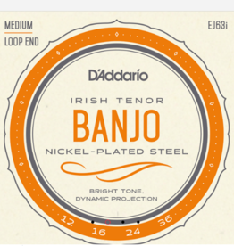 D'Addario D'Addario Irish Tenor Banjo Nickel, 12-36