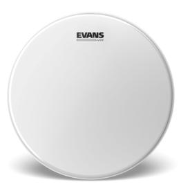"""Evans Evans 14"""" UV2 Coated Drumhead"""
