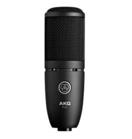 AKG AKG P120 High Performance General Purpose Recording Mic