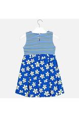 Dress, Daisy/Stripe,