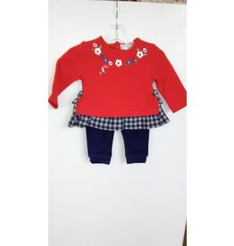 Tunic & Leggings, Flowers, Size 2-4 Months