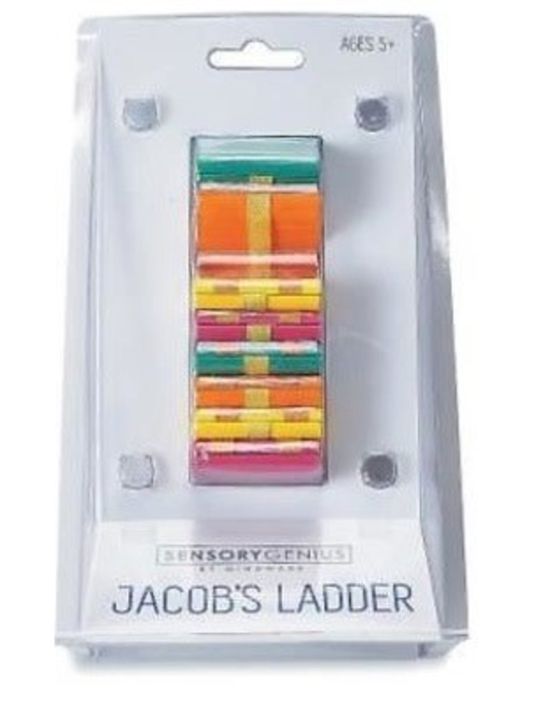 Sensory Genius Jacob's Ladder