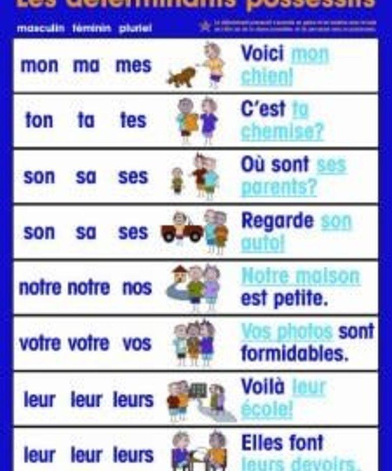 French Poster - Les determinants possessifs