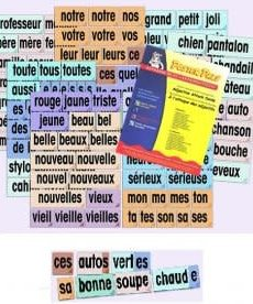 French Posters - Adjective Attack Cards (and reproducible)
