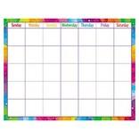 Color Splash Write On/Wipe Off Calendar