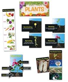 Plants-Mini-Bulletin