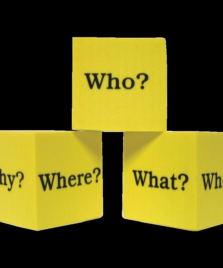 Foam Question Cubes