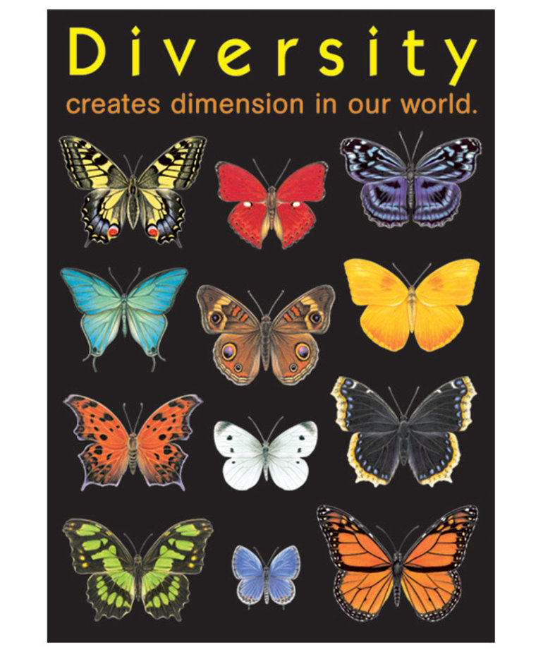 Diversity creates Dimension...-Poster