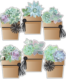 Simply Stylish Potted Succulents