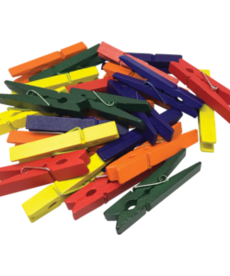 STEM Basics: Medium Multicolor Clothespins-50