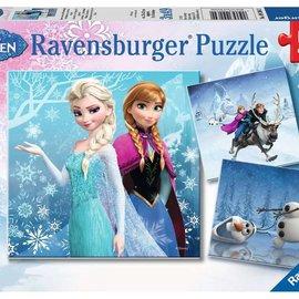 Frozen Winter Adventures (3X49pc)
