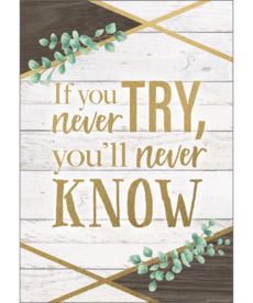 Eucalyptus If You Never Try You Will Never Know Positive Poster